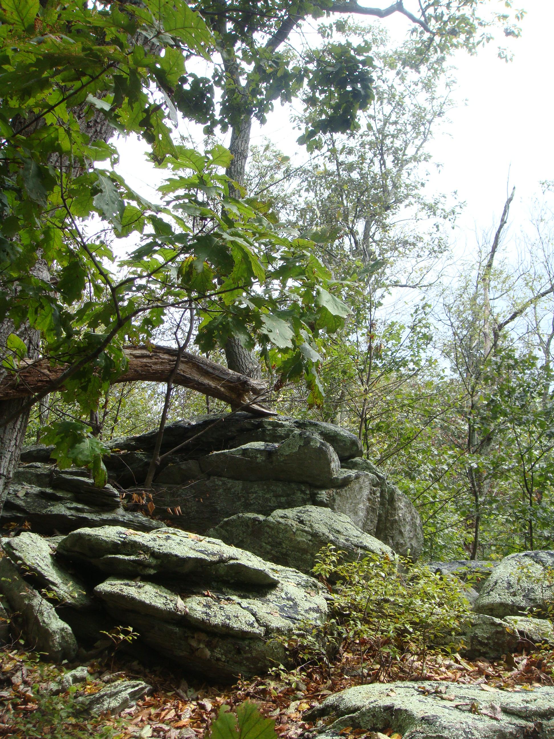 Appalachian-Trail - Daniel Meister